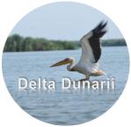 DeltaDunarii